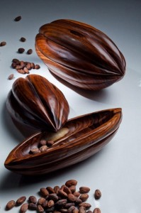 Hand-carved-cacaos-inspired-in-the-real-cacao-fruits (Copier)
