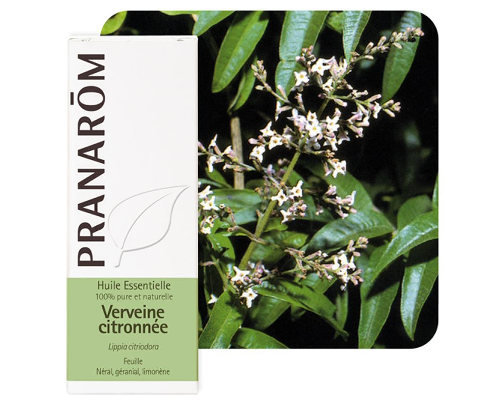 1755_verveine_citronnee_(lippia_citriodora)_5_ml.jpg.thumb_1000x800