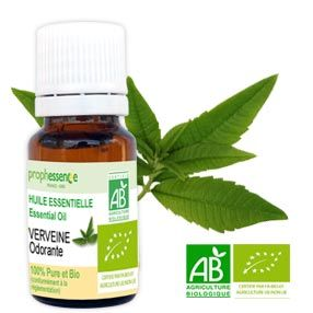 verveine-odorante-bio-huile-essentielle