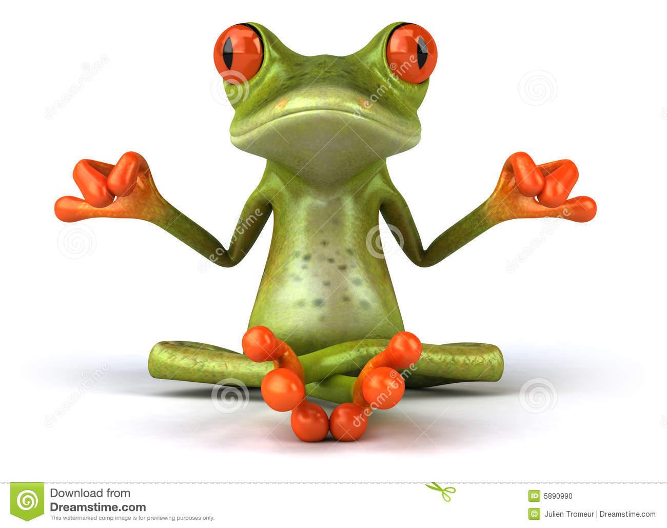 http://www.dreamstime.com/stock-photo-zen-frog-image5890990